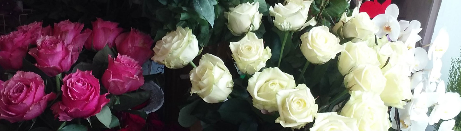Kwiaciarnia Flora w Gdyni